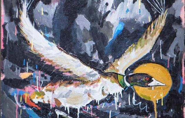 Common Loon by Kristian Glynn