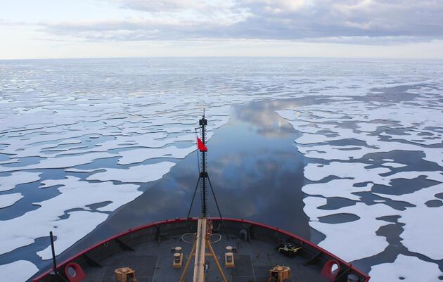El océano Ártico: un futuro en peligro