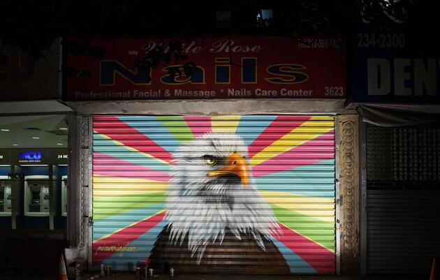 Bald Eagle by Peter Daverington