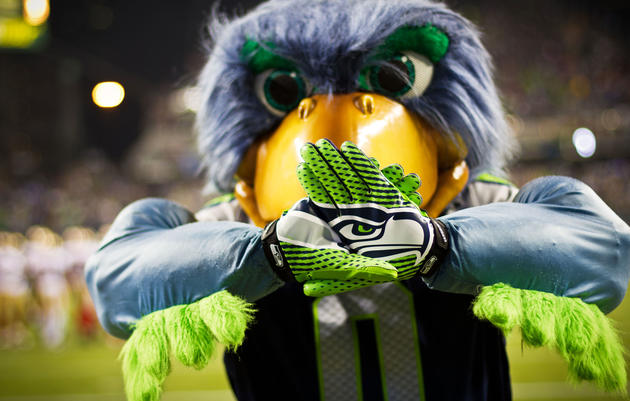 What Is a Seahawk, Anyway?