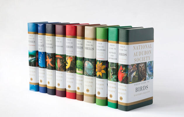 National Audubon Society Field Guides