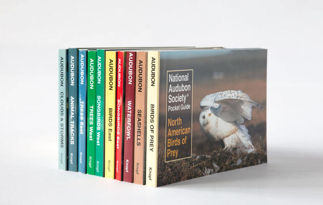 Audubon Pocket Guides