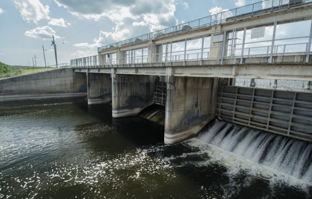 The Rodman Dam blocks the migration of numerous species, from American eels to endangered shortnose sturgeon, and also prevents manatees from reaching important winter habitat. Photograph by Carlton Ward Jr.