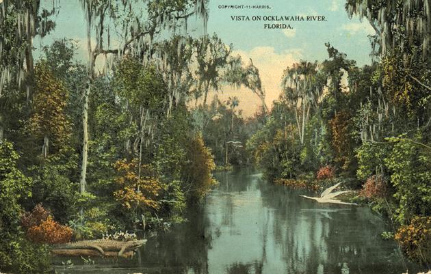 Time Capsule: Canal Threatens Florida's Oklawaha River