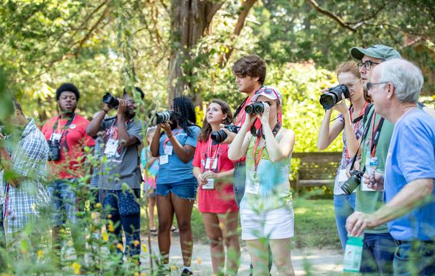 Celebrating Birds Through the Lens of Photography