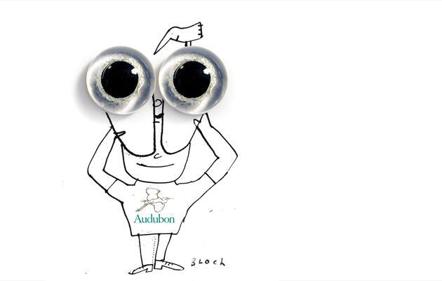 The Audubon Guide to Binoculars