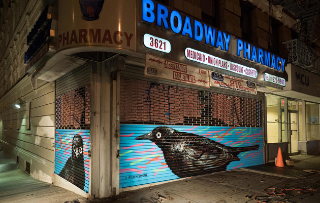 Rusty Blackbird by Taylor McKimens