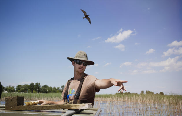 Caleb Putnam, Michigan Important Bird Areas program coordinator for Audubon Great Lakes. Mike Fernandez/Audubon