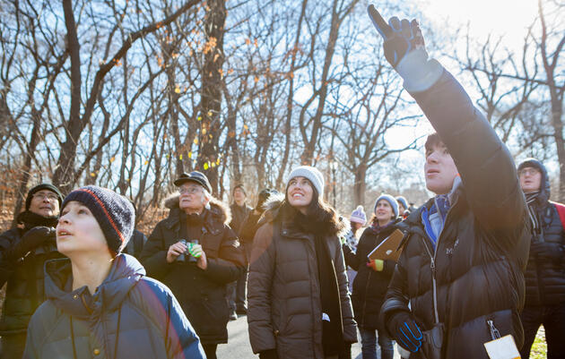 It's Time for Audubon's 117th Annual Christmas Bird Count