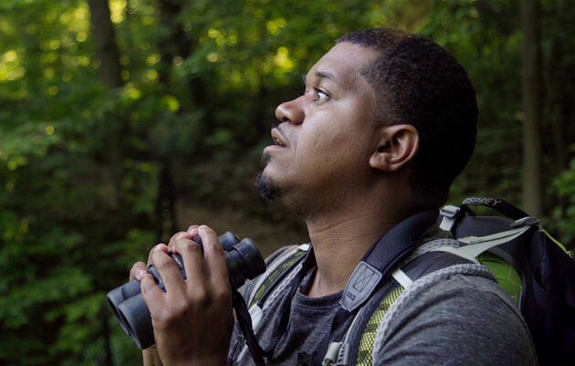 From Birding in the Bronx to Birding on Your Screens, It's Been a Journey
