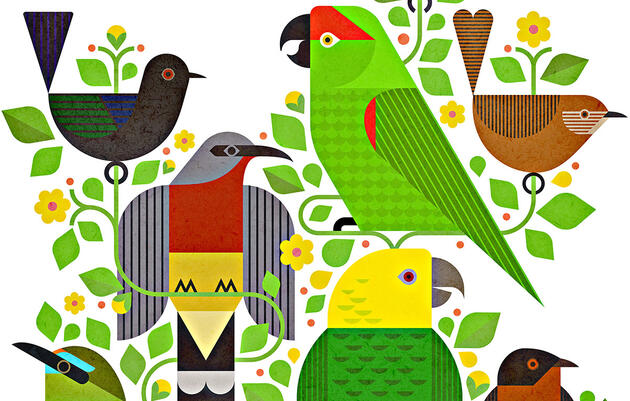 These Bird-Inspired Dance Albums Deliver Catchy Beats and Conservation Funding