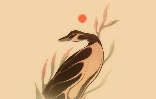 Reimagining the Canada Goose