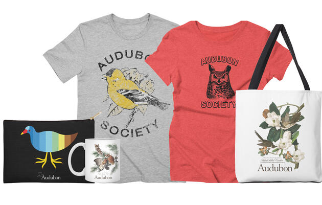 Official Audubon Apparel and Accessories