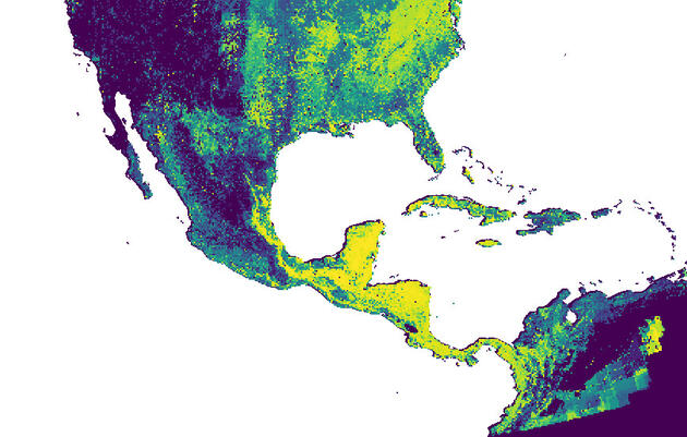 Deforestation and Drought in the Tropics Are the Biggest Threats to U.S. Forest Birds
