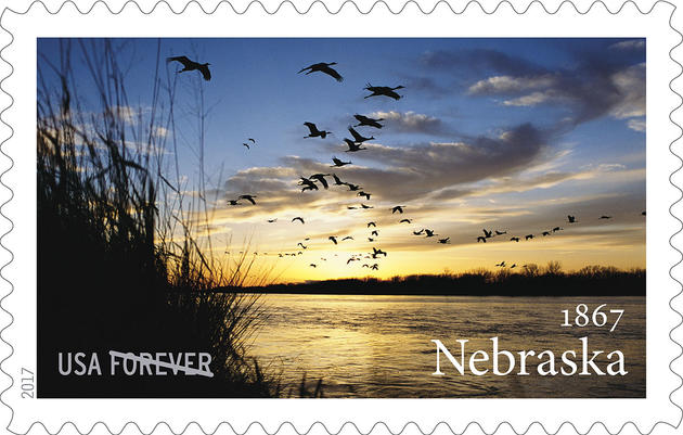 Gorgeous Sunset Shot of Sandhill Cranes Wins Spot on New USPS Stamp