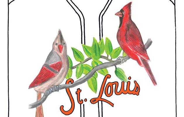 Reimaginando al cardenal rojo