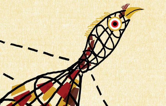 Reimagining the Wild Turkey