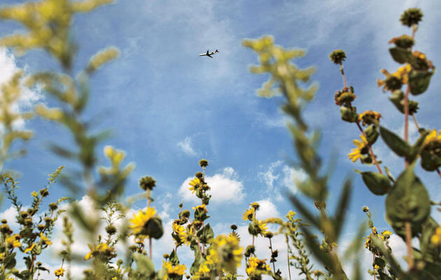 A plane seen over Knoop Prairie. Andrew Spear/The New York Times/Redux