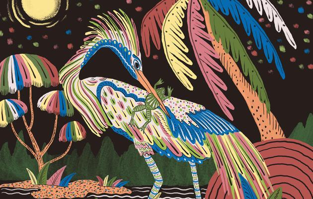 Reimagining the Tricolored Heron