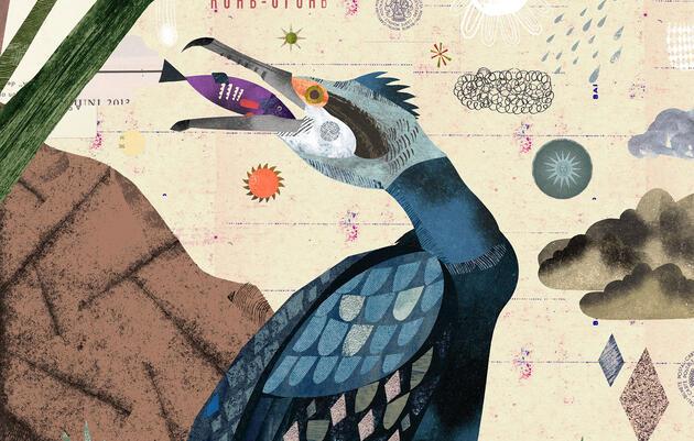 Reimagining the Great Cormorant