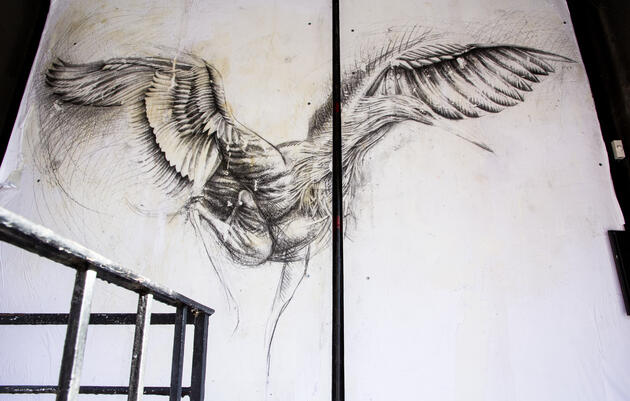 Reddish Egret by Matthew Woodward