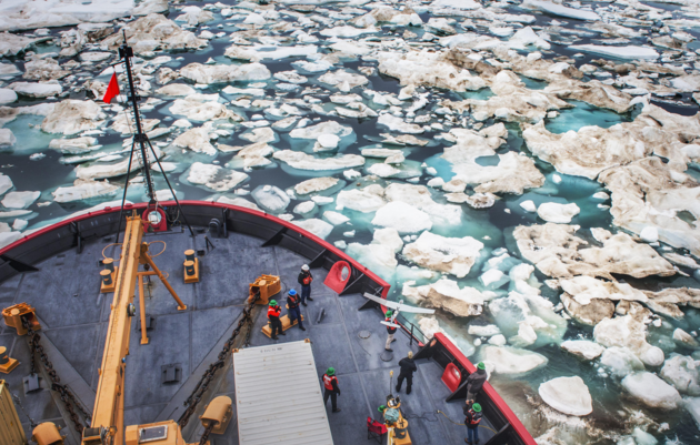 Breaking the Ice: Survival Lessons from a Changing Arctic