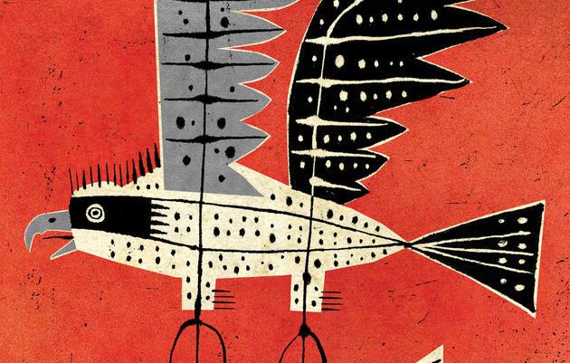 Reimagining the Osprey