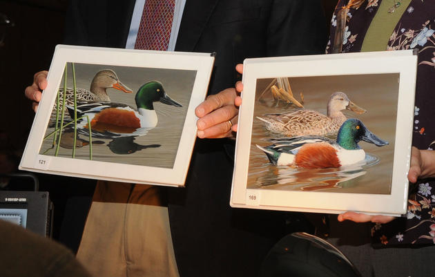 Will the Duck Stamp Get a New Look?