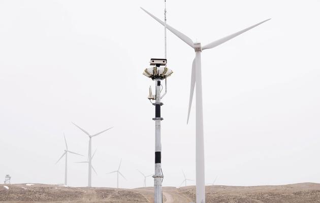De qué modo la nueva tecnología convierte a los parques eólicos en lugares más seguros para las aves