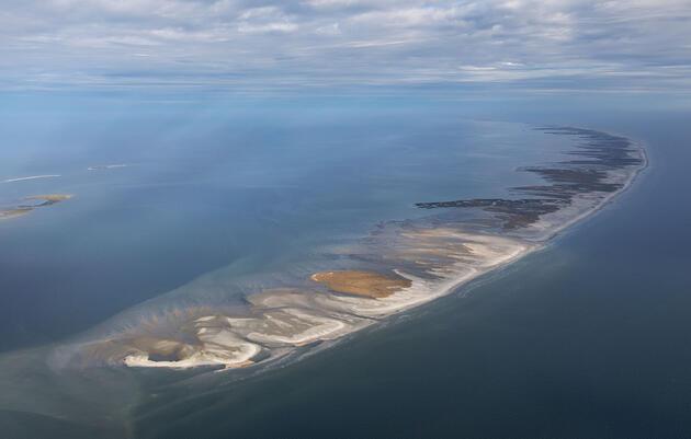 La financiación del acuerdo de Deepwater Horizon fluye hacia los estados del golfo