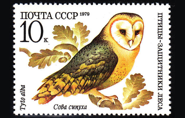 This Bird-Themed Snail Mail Deserves Your Stamp Of Approval
