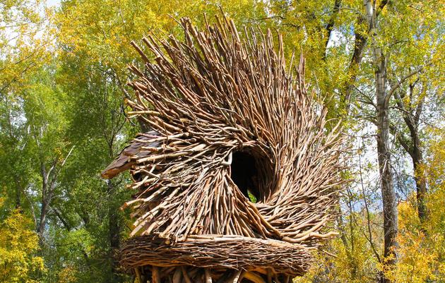 De escombros a nidos: el artista que hace refugios de ramas caídas y árboles