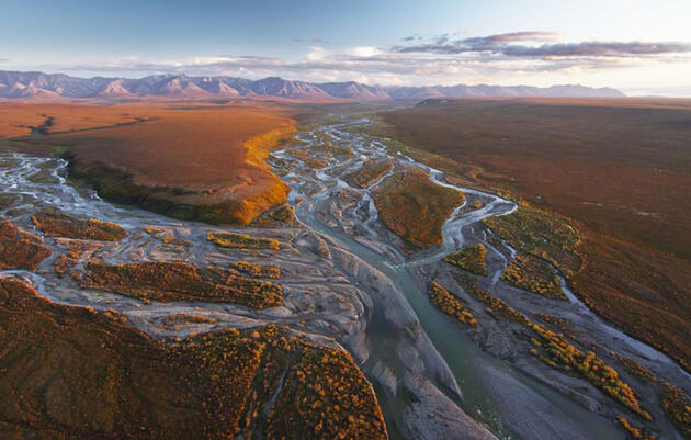 What's Going on With the Arctic National Wildlife Refuge?