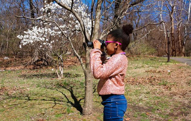 Self-Isolation Is Turning Children Into Budding Birders