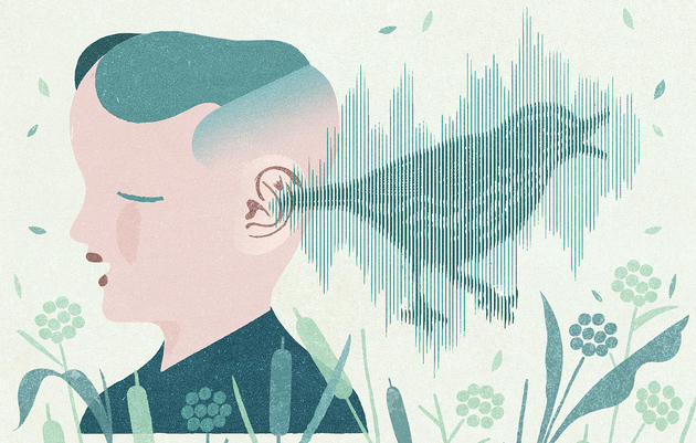 Birding Blind: Open Your Ears to the Amazing World of Bird Sounds