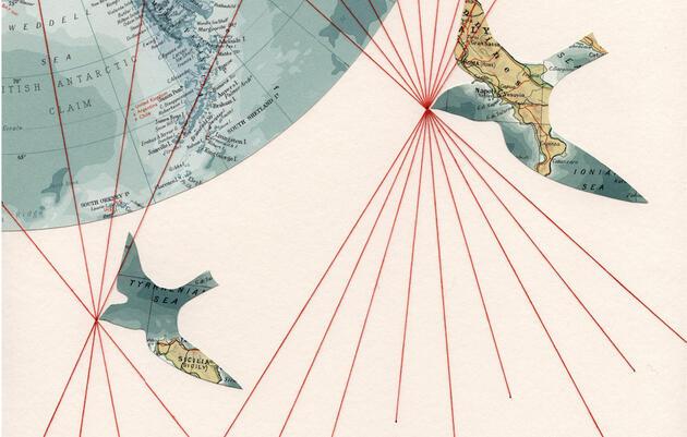 Illustration: Shannon Rankin/Selflesh.Etsy.com