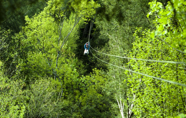 The author on an Adventures on the Gorge canopy zipline. The longest leg on this circuit is more than 700 feet, and zippers reach speeds of up to 30 miles per hour. Photograph by Jeff Hutchens