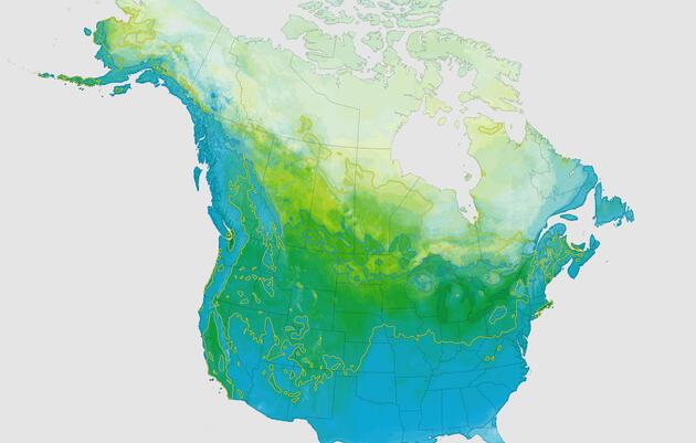 Birds & Climate Report