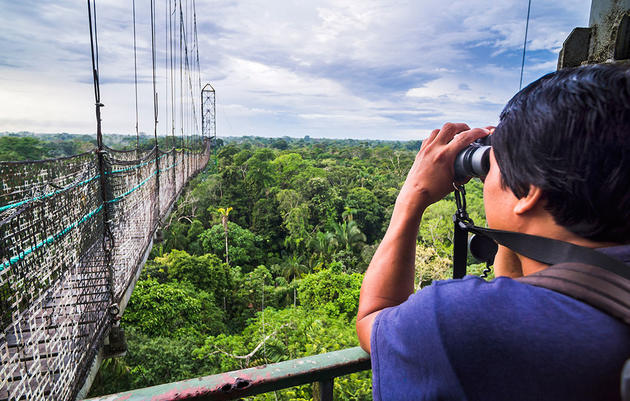 Take Your Birding Adventure to New Heights