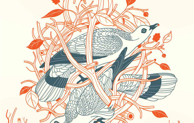 Illustration: Harry Campbell
