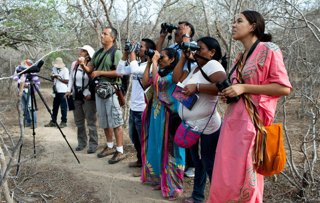 Colombia's First Caribbean Birdwatching Trail Attracts Attention