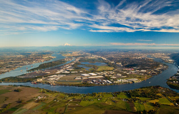 48 Hours of Birding (and Other Things): Portland, Oregon