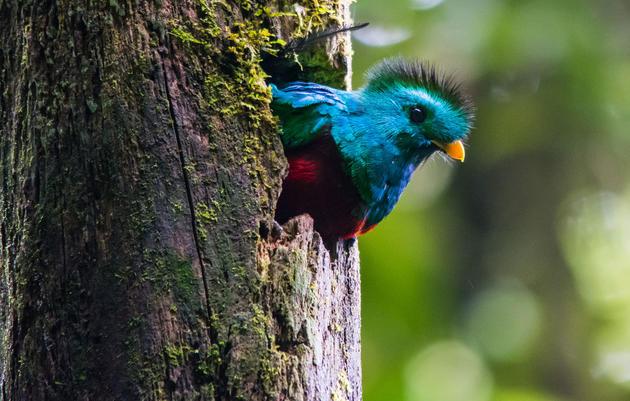 Turismo Ecológico en Guatemala