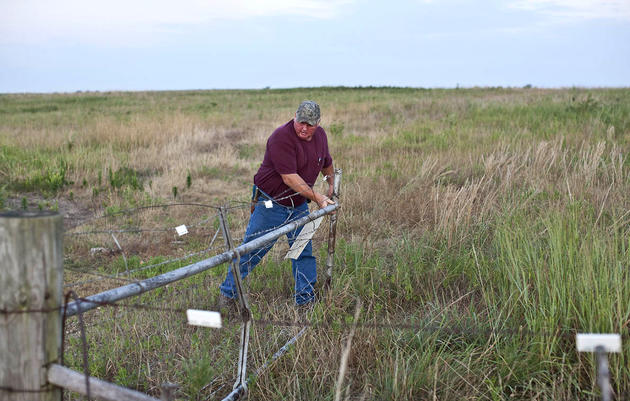 Working Lands: A Missouri Farmer Saves Prairie and Grassland Birds