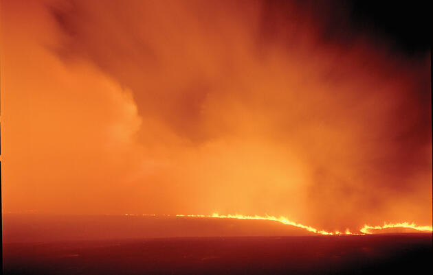 The Perfect Firestorm
