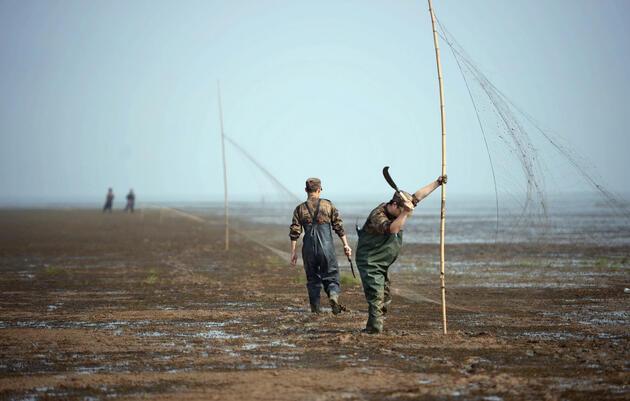 Fighting Bird Poachers at China's Poyang Lake
