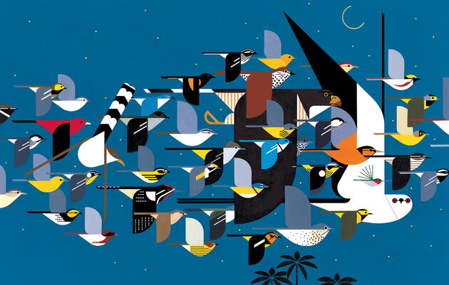 Mystery of the Missing Migrants, 1990 Charley Harper