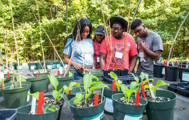 Audubon's Campus Chapter Program Is Taking Off in Mississippi