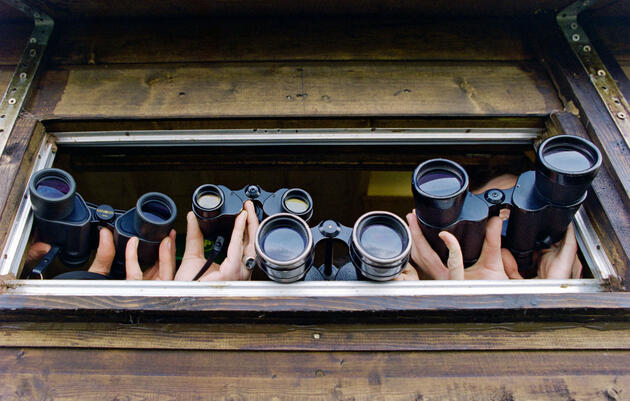 How To Choose Your Binoculars