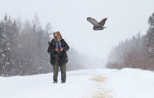 Want to Photograph Boreal Birds This Winter? Head to Minnesota's Sax-Zim Bog